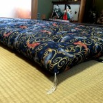 Futon Shopping Experience: Outstanding! Anne D., Temicula, CA Testimonial