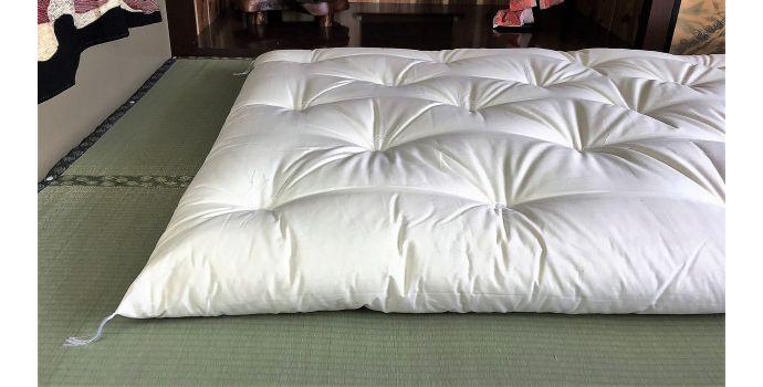 Plain White Shikibuton Mattress